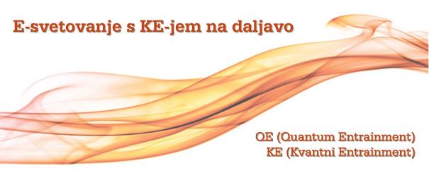 FB-QE-Kinslow-svetovanje